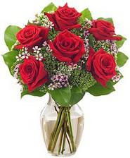 Kız arkadaşıma hediye 6 kırmızı gül  Bilecik çiçekçi internetten çiçek siparişi