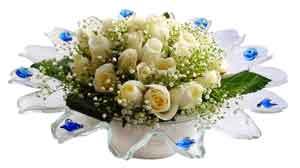 Bilecik çiçekçi çiçek online çiçek siparişi  11 adet Beyaz güller özel cam tanzim