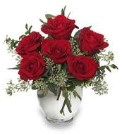 Vazo içerisinde 5 adet kırmızı gül  Bilecik çiçekçi çiçekçi mağazası