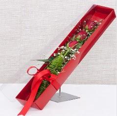 Kutu içerisinde 3 adet kırmızı gül  Bilecik çiçekçi online çiçek gönderme sipariş