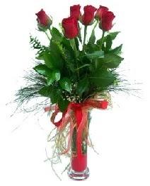 vazo içerisinde 5 kırmızı gül  Bilecik çiçekçi güvenli kaliteli hızlı çiçek