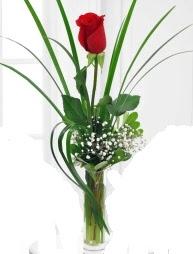 Cam içerisinde 1 kırmızı gül  Bilecik çiçekçi çiçek gönderme sitemiz güvenlidir