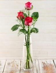 Cam içerisinde 3 kırmızı gül  Bilecik çiçekçi çiçek satışı