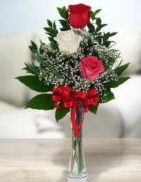 Camda 2 kırmızı 1 beyaz gül  Bilecik çiçekçi ucuz çiçek gönder