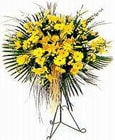 Bilecik çiçekçi yurtiçi ve yurtdışı çiçek siparişi  Sari kazablanka Ferforje