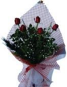 Bilecik çiçekçi çiçekçi mağazası  5 adet kirmizi güllerden buket