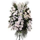 Bilecik çiçekçi cicek , cicekci  Ferforje beyaz renkli kazablanka