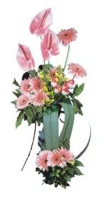 Bilecik çiçekçi güvenli kaliteli hızlı çiçek  Pembe Antoryum Harikalar Rüyasi