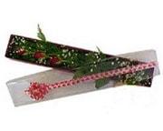 Bilecik çiçekçi hediye çiçek yolla  3 adet gül.kutu yaldizlidir.