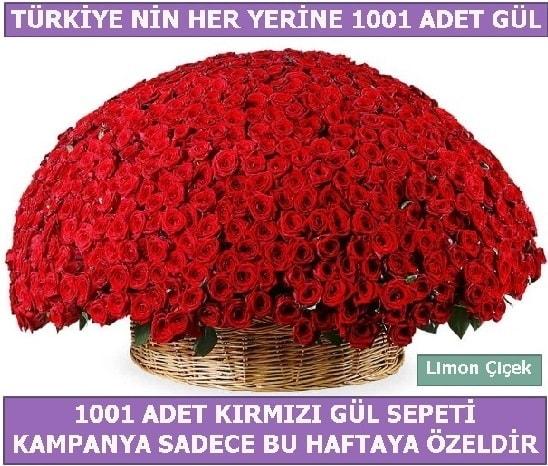 1001 Adet kırmızı gül Bu haftaya özel  Bilecik çiçekçi İnternetten çiçek siparişi