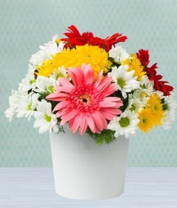 Seramik Vazoda Gelbera ve Papatya  Bilecik çiçekçi çiçek gönderme