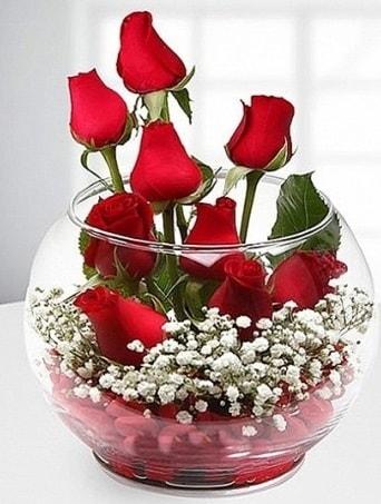 Kırmızı Mutluluk fanusta 9 kırmızı gül  Bilecik çiçekçi çiçek siparişi sitesi