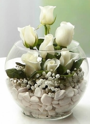 Beyaz Mutluluk 9 beyaz gül fanusta  Bilecik çiçekçi çiçek siparişi sitesi
