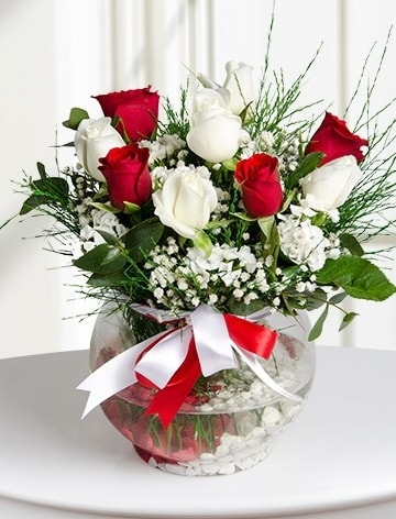 Aşk Küresi  5 beyaz 5 kırmızı gül fanusta  Bilecik çiçekçi internetten çiçek satışı
