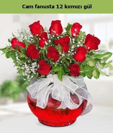 Cam içerisinde 12 adet kırmızı gül  Bilecik çiçekçi internetten çiçek satışı