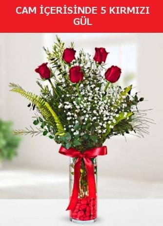 Cam içerisinde 5 adet kırmızı gül  Bilecik çiçekçi çiçek siparişi sitesi
