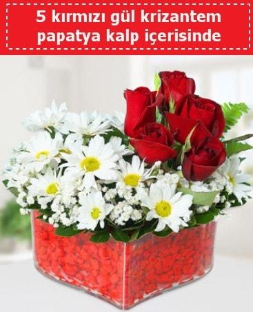 mika kalp içerisinde 5 kırmızı gül papatya  Bilecik çiçekçi çiçek gönderme
