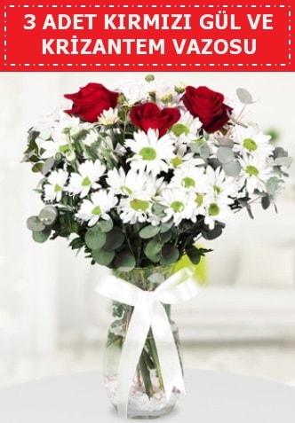 3 kırmızı gül ve camda krizantem çiçekleri  Bilecik çiçekçi çiçek gönderme