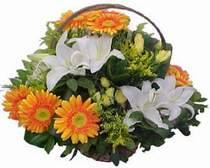 Bilecik çiçekçi online çiçekçi , çiçek siparişi  sepet modeli Gerbera kazablanka sepet